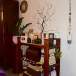 Feng Shui for the Aleksandra Golubović Clinic